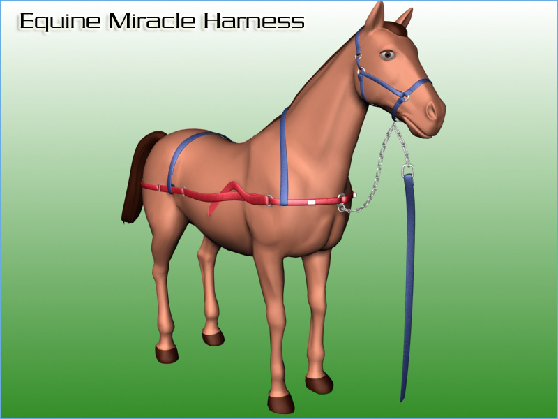 Equine Miracle Harness
