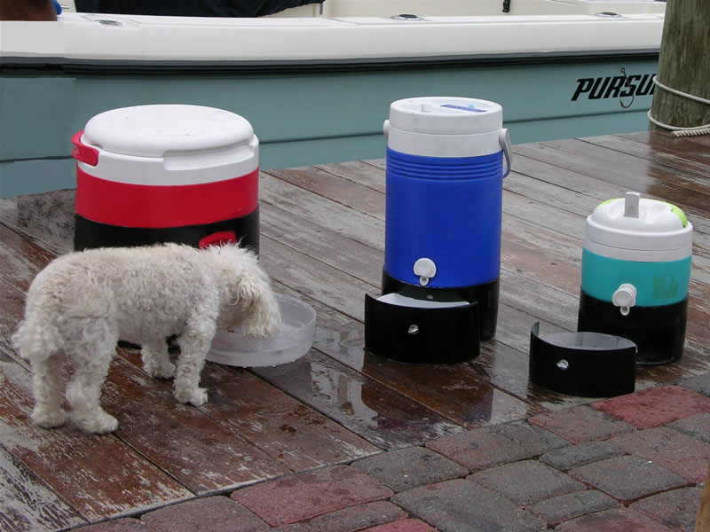 Pet Watering System with Retractable Bowl